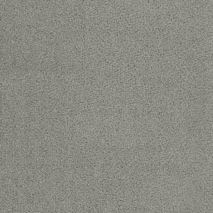 28 oz silver dollar | 28 Oz Carpet Plus | Carpet Plus Options | The Inside Track