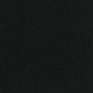 28 oz black | 28 Oz Carpet Plus | Carpet Plus Options | The Inside Track