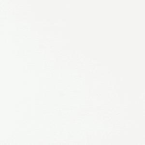 50 oz white | 50 Oz Carpet| Premum Carpet OptionsThe Inside Track